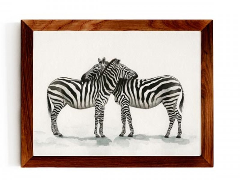 Animal Wildlife Print - Zebra Love