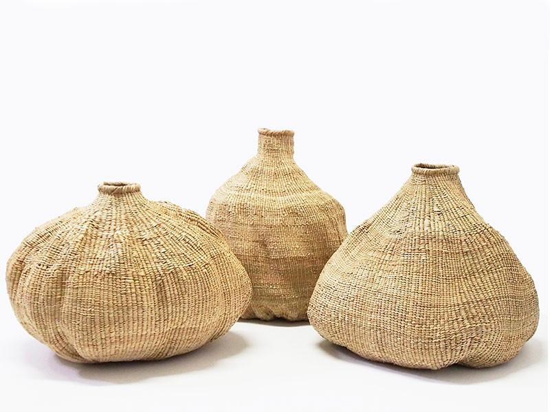 Bulawayo Garlic Gourd 80-85cm