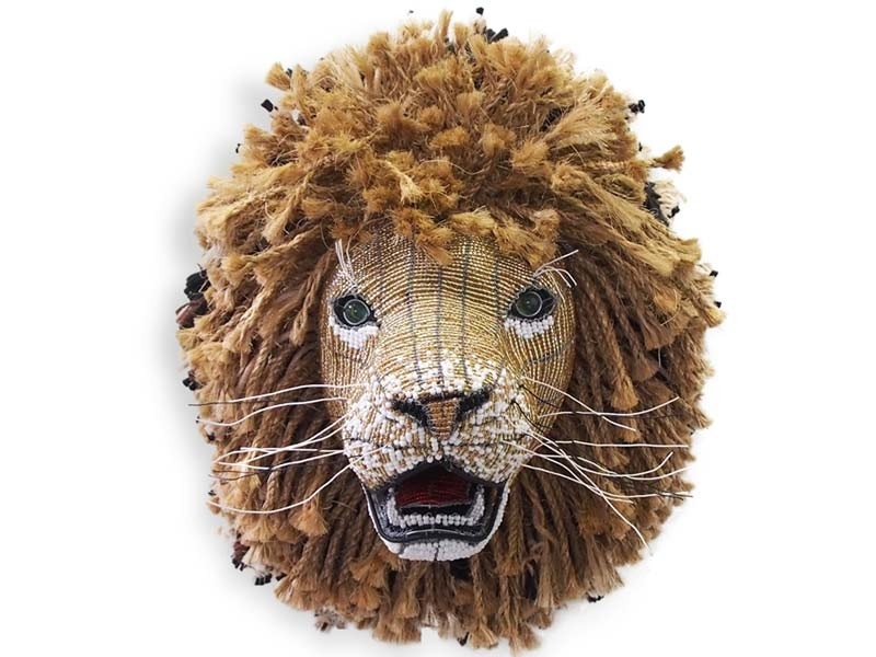 Lion Front View